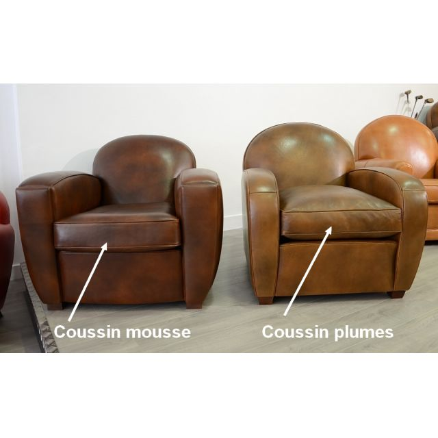Coussin Plumes